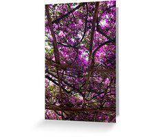 Amalfi Purple Greeting Card