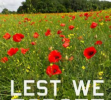 Remember them poster version 'Lest we forget' by Gary Eason