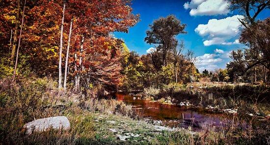 October Palette by Wib Dawson