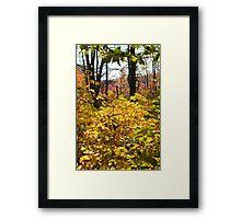 Noanet Woodlands Fall Foliage Framed Print