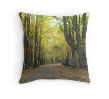 Winding Road that Leads to Your Heart Throw Pillow