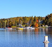 Lake view in autumn by marchello