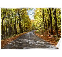 Country road in autumn Poster
