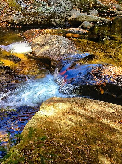 Grafton Notch State Park, Maine, USA by fauselr