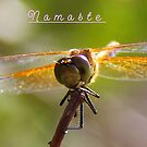 Namaste` by Brenda Dahl