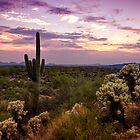 Pink Desert Skies  by Saija  Lehtonen