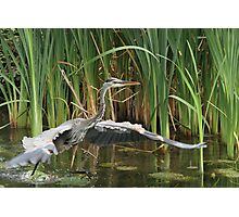 Water racing Photographic Print