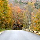 October Drive by DreamCatcher/ Kyrah