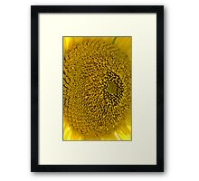 Seedless Framed Print