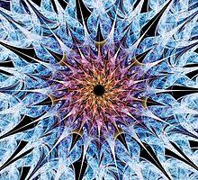 Sea Urchin by Anastasiya Malakhova