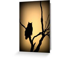 Great Horned Owl~ Sunset Stare Greeting Card