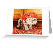 Eggs in a Red Hat Greeting Card