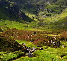 Corrie Fee, Glen Clova. by Neil MacNeill
