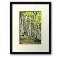 Feel free to use Framed Print