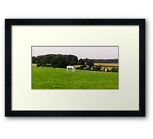 The Grazing Horse out of train window Framed Print