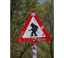 Beware of Trolls Photographic Print