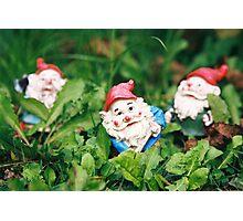 Dwarfs Photographic Print