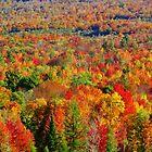 Autumn by ekenney87