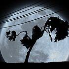 Limbo Tree by Brinjen
