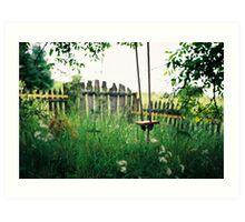 Alenka's Garden Art Print