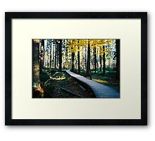 From Here On Framed Print