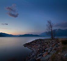 Harrison lake by Eti Reid