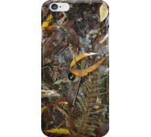 Snail's Pace on the Rainforest Floor - Otway Ranges iPhone Case/Skin
