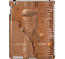 urban shaman 3 iPad Case/Skin
