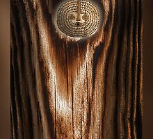 urban shaman 4 by arteology