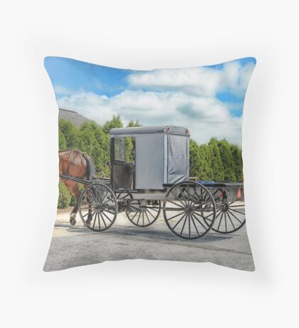 Horse & Buggy Throw Pillow