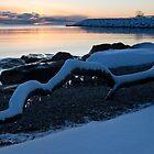 Icy, Snowy Winter Sunrise on the Lake by Georgia Mizuleva