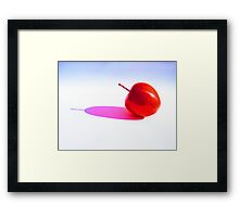 Red Apple and it,s Shadow. Framed Print