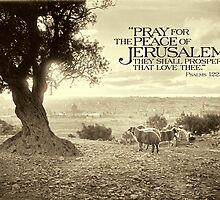 Pray for the Peace of Jerusalem (Mount of Olives) - ca 1910 by Doug Heckaman