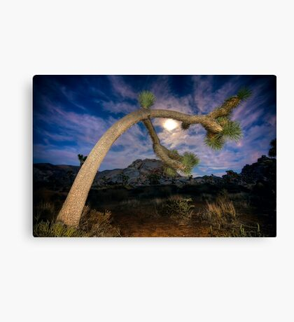Joshua Tree Moon Landscape Canvas Print