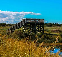 Lookout Tower by MattyBoh424