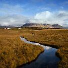 Iceland landscape by Marzena Grabczynska Lorenc