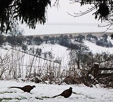 The Wolds in winter by Yorkspalette