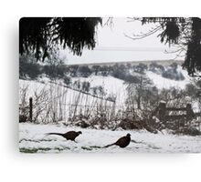 The Wolds in winter Metal Print