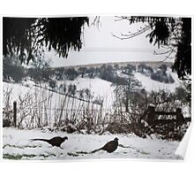 The Wolds in winter Poster
