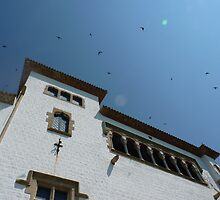swallows over sitges by jonvin