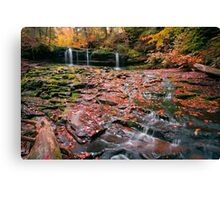 More Moss And Autumn Leaves Than Water Canvas Print