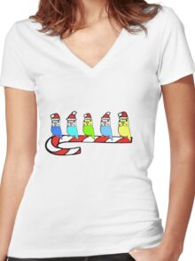 Budgies- Christmas Women's Fitted V-Neck T-Shirt
