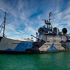 Sea Shepherd by Andrew Holford