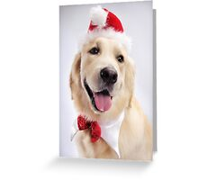 Cute Golden Retriever Wearing Santa Hat art photo print Greeting Card