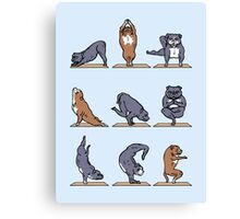 Bull Terrier Yoga Canvas Print