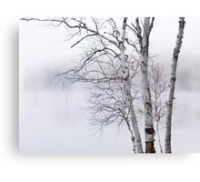 Birch trees over misty white lake nature scenery art photo print Canvas Print