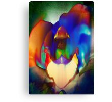 4405 Psychedelic Orchid Canvas Print
