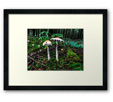 So Like Where Are We? ~ Mushrooms ~ Framed Print