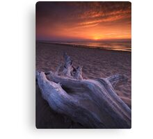 Driftwood on a shore of lake Huron sunset scenery art photo print Canvas Print