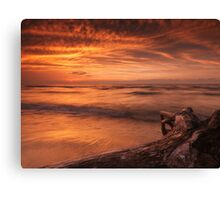 Beautiful atmospheric sunset scenery of driftwood on lake shore art photo print Canvas Print
